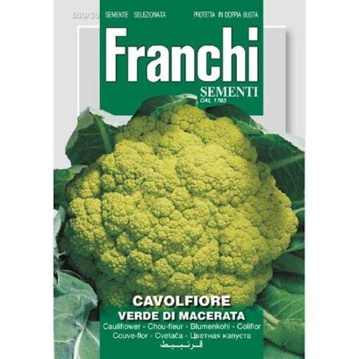 Bloemkool zaden cavolfiore verde de macerata