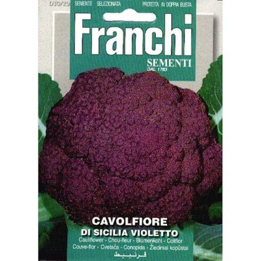 Bloemkool siclia violetto