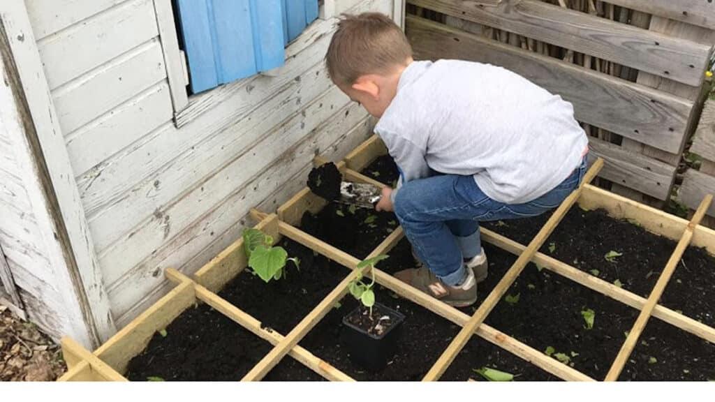Vierkante meter tuin aanplanten