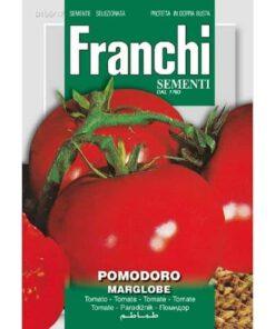 Tomaat Pomodoro Marglobe