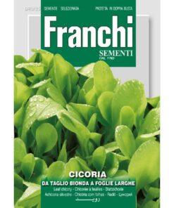 Fr Cichorei, Cicoria Bonda foglie larghe
