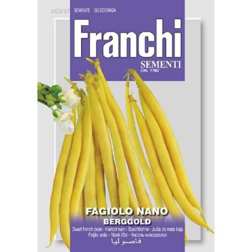 Fr Boon, Fagiolo Nano berggold