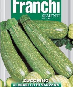 Courgette zaden